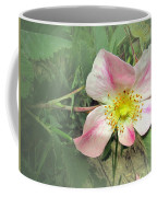 Paint Mines Wild Rose Coffee Mug
