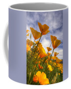 Paint The Desert With Poppies  Coffee Mug