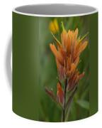 Paintbrush Peach Coffee Mug