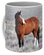 Painted Apache Coffee Mug