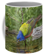 Painted Bunting Coffee Mug