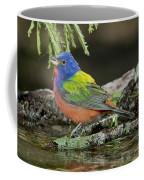 Painted Bunting Drinking Coffee Mug
