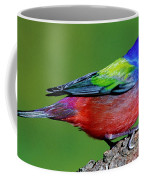Painted Bunting Passerina Ciris Coffee Mug