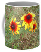 Painted Daisies Coffee Mug