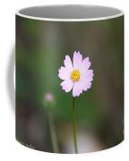 Painted Desert Floral Coffee Mug