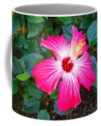 'painted Lady' Hibiscus Coffee Mug