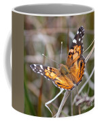 Painted Lady Square Coffee Mug