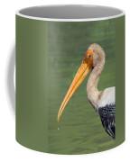 Painted Stork Mycteria Leucocephala Coffee Mug