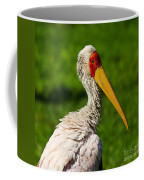 Painted Stork Coffee Mug