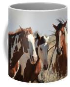 Painted Wild Horses Coffee Mug