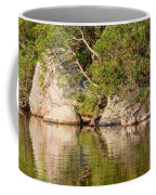 Painting White Rocks Coffee Mug