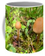 Pair O Mushrooms Coffee Mug