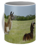 Pair Of Alpacas Coffee Mug