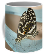 Pair Of Citrus Swallowtail Butterflies  Coffee Mug