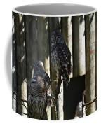 Pair Of Owls Coffee Mug