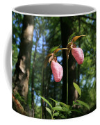 Pair Of Pink Lady Slippers  Coffee Mug