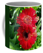 Pair Of Red Gerber Daisy Flowers With Ladybug Coffee Mug