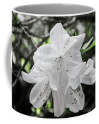 Pale Beauty Coffee Mug