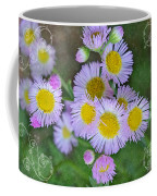 Pale Pink Fleabane Blooms With Decorations Coffee Mug