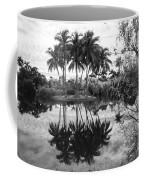 Palm Island  Coffee Mug