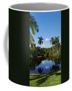 Palm Reflection And Shadow Coffee Mug