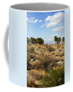 Palm Springs Indian Canyons View  Coffee Mug