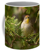 Palm Warbler Coffee Mug