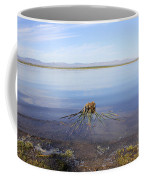 Palm Water Coffee Mug