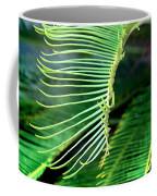 Palme Cycas Coffee Mug