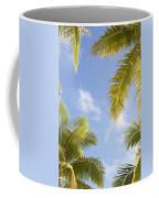 Palms And Sky Coffee Mug