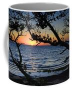 Pamlico Sound Through The Trees Coffee Mug