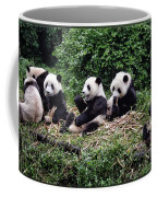 Pandas In China Coffee Mug