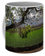Panoramic Of Winter Lettuce Coffee Mug by Robert Bales