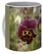 Pansy Beauty Photograph Coffee Mug