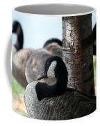 Pap Daddy Big Spring Park Coffee Mug