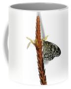 Paper Kite Coffee Mug