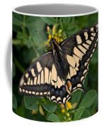 Papilio Machaon Butterfly Sitting On The Lucerne Plant Coffee Mug