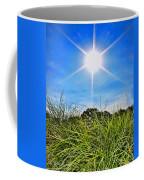 Papyrus In The Sun Coffee Mug