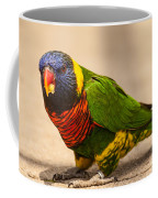 Parakeet With Treat Coffee Mug