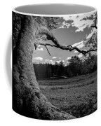 Park In Black And White Coffee Mug