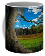 Park In Massachusetts In The Fall Coffee Mug