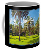 Park Open Area 2 Coffee Mug