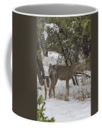 Parker Canyon 7 Coffee Mug