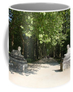 Parkway Chateau Chenonceaux  France Coffee Mug