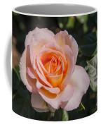 Parnell Pink Rose Coffee Mug