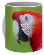 Parrot 35 Coffee Mug