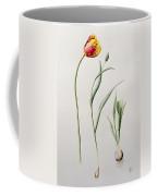 Parrot Tulip Coffee Mug by Iona Hordern