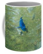 Parrotfish On A Swim Coffee Mug by John M Bailey