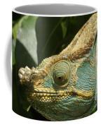 Parsons Chameleon From Madagascar 12 Coffee Mug