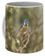 Parus Sitting On A Thin Branch Coffee Mug